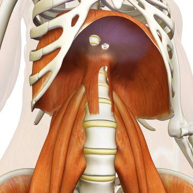Bracing – Manobra respiratória